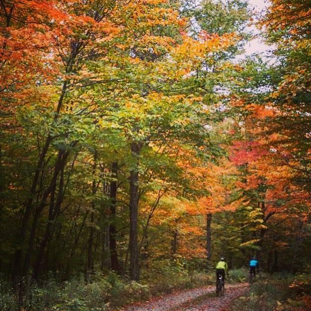 Vermont Forest Fondo