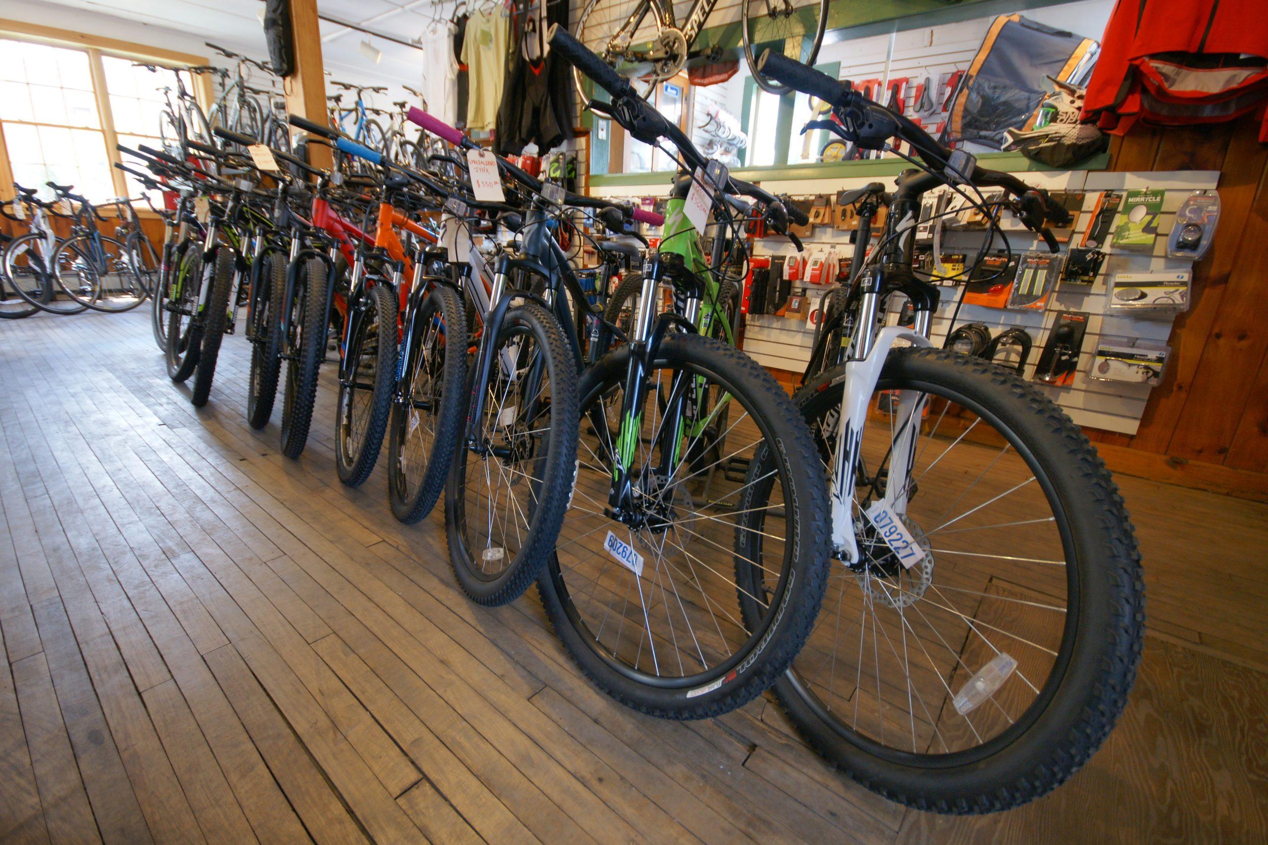 Frog Hollow Bikes. Trek, Bianchi, and Cannondale Dealer