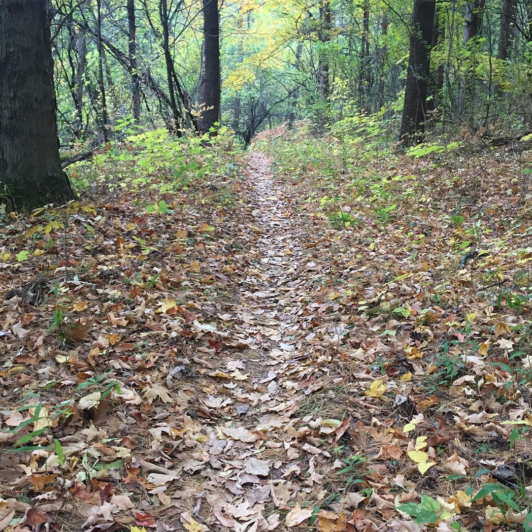 Addison County Mountain Trails